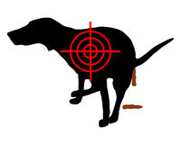 Aim at dog crapping Stock Photography