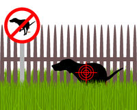 Aim at dog crapping. Detailed and accurate illustration of aim at dog crapping Stock Photography