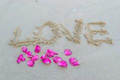 Aimez écrit sur la plage et un morceau de fleur rose Photos libres de droits