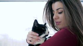 Aimez aux animaux, plan rapproché de caresse d'animal familier de maîtresse aux vacances sur le fond de fenêtre banque de vidéos