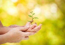 Aimez et protégez la nature Images stock