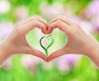 Aimez et protégez la nature et la durée Photo libre de droits