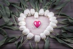 Aimez la belle surprise de coeur lumineux de tulipes actuelle pour l'amie Images stock