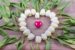 Aimez le coeur rose de la belle surprise de tulipes actuelle pour l'amie Photographie stock
