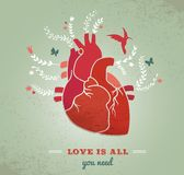 Aimez le fond avec le coeur et les fleurs, valentines Photos libres de droits