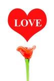 Aimez le mot au coeur rouge avec la fleur rouge sur le fond blanc, amour Images libres de droits