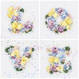 Aimez le mot fait de fleurs jaunes et bleues Image libre de droits