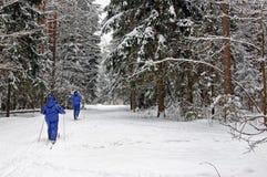 Aimez le ski de couples dans la forêt un beau jour d'hiver photo stock