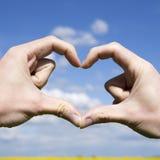 Aimez les mains de forme - coeur sur le champ jaune et le ciel bleu Photo libre de droits