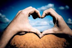 Aimez les mains de forme - coeur sur le champ jaune et le ciel bleu Photos libres de droits