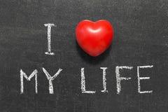 Aimez ma vie image libre de droits