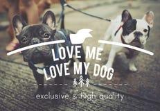 Aimez-moi amour mon concept insouciant d'idées d'états de chien Images libres de droits