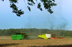 Two agricultural machines operate in the field, grain harvesting machines operate in the field, agricultural land. Ain harvesting machines operate in the field Royalty Free Stock Photography