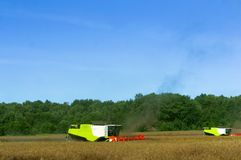Two agricultural machines operate in the field, grain harvesting machines operate in the field, agricultural land. Ain harvesting machines operate in the field Royalty Free Stock Photo