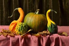 Ainda abóboras da vida na tabela nas folhas de outono Fotos de Stock