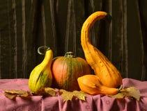 Ainda abóboras da vida na tabela nas folhas de outono Fotografia de Stock Royalty Free