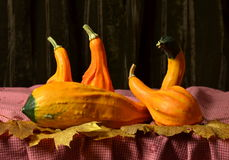 Ainda abóboras da vida na tabela nas folhas de outono Imagem de Stock Royalty Free