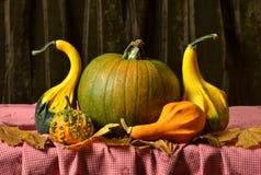 Ainda abóboras da vida na tabela nas folhas de outono Foto de Stock Royalty Free