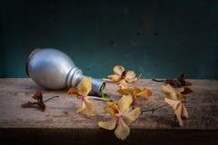 Ainda cesta da flor da vida Imagem de Stock