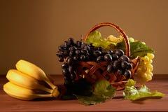Ainda cesta de fruto da vida Fotos de Stock