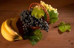 Ainda cesta de fruto da vida Imagens de Stock Royalty Free