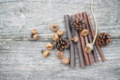 Ainda composição da vida com cones do pinho e as varas de madeira Imagens de Stock