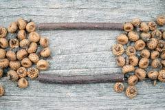 Ainda composição da vida com cones do pinho e as varas de madeira Foto de Stock