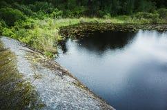 Ainda costa do lago com pedras e grama verde fotografia de stock royalty free