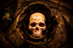 Ainda crânio do soldado da vida Foto de Stock