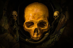 Ainda crânio do soldado da vida Fotografia de Stock Royalty Free