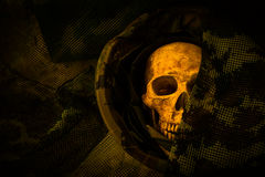 Ainda crânio do soldado da vida Imagem de Stock Royalty Free