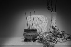 Ainda crisântemo da vida e estilo preto e branco do incenso Fotos de Stock