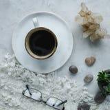 Ainda detalhes da vida, xícara de café, potenciômetro da planta, vidros no fundo branco na sala de visitas Imagens de Stock