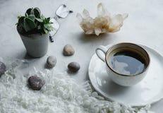 Ainda detalhes da vida, xícara de café, potenciômetro da planta, vidros no fundo branco na sala de visitas Imagem de Stock Royalty Free