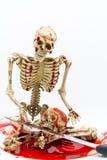 Ainda esqueleto da vida no sangue com a faca no fundo branco Foto de Stock Royalty Free