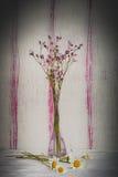 Ainda flores da vida Fotos de Stock