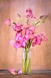 Ainda flores de lótus cor-de-rosa da vida Fotografia de Stock