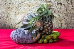 Ainda fotografia da arte da vida na abóbora e no abacaxi da banana Foto de Stock