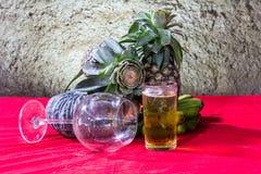Ainda fotografia da arte da vida na cerveja e no pinho de vidro da abóbora da banana Fotos de Stock Royalty Free