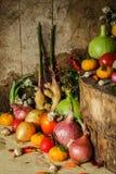Ainda fotografia da vida com especiarias e ervas Imagens de Stock Royalty Free