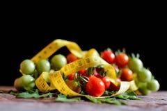 Ainda grupo da vida de tomate na madeira velha Fotos de Stock