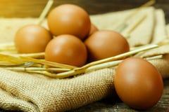 Ainda ovo fresco da vida na madeira velha, ingrediente cru, preparação fresca do ovo Imagens de Stock