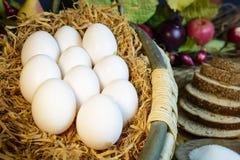 Ainda ovos da vida no feno na cesta Imagem de Stock