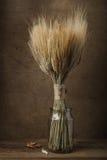 Ainda polia da vida do trigo seca no frasco de vidro Fotografia de Stock