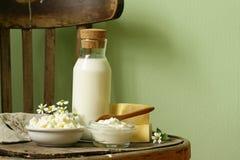 Ainda produtos láteos rústicos da vida - requeijão, creme de leite Fotos de Stock Royalty Free