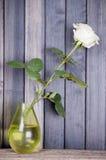 Ainda rosa do branco da vida em um vaso no fundo escuro Imagens de Stock