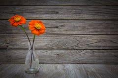 Ainda vaso da vida com flores Imagens de Stock Royalty Free