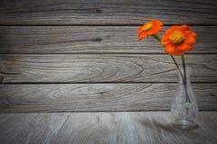 Ainda vaso da vida com flores Foto de Stock
