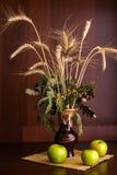 Ainda vaso e maçãs da vida Fotografia de Stock Royalty Free
