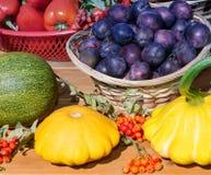 Ainda vida: ameixas, abóboras e outros vegetais Imagens de Stock